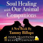 Soul Healing Animal Companions