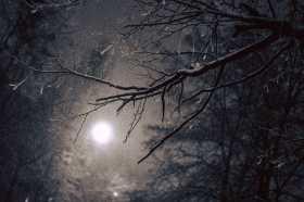 Full Moon Winter Garden Blessing