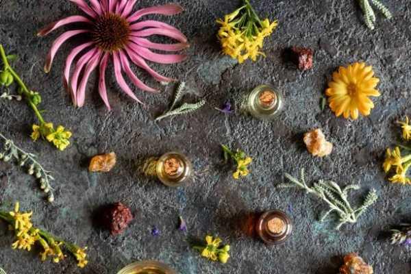 Astrological Almanac – Green Witchery Wisdom