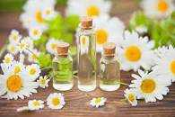 Self-Care Spell: Roman Chamomile for Calm