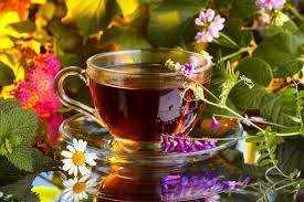 Hedgewitch Wellness Wisdom: Tea Magic