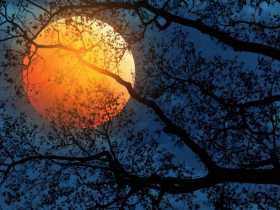 Lunar Eclipse Rite: That Which is Hidden Will Be Revealed