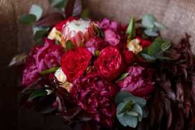 Your Love Grows Daily: Magical Garden