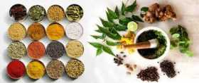 KItchen Witch Cures: Spice and Herbal Healers