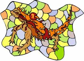 Thorny Devil: Problem Solving