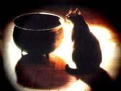 Magical Mondays: A Samhain Ritual
