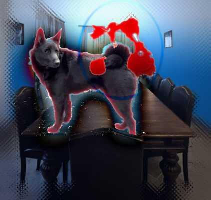 Blood, Black Dog, & Boardroom
