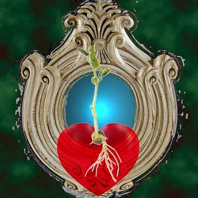 Heart Stories