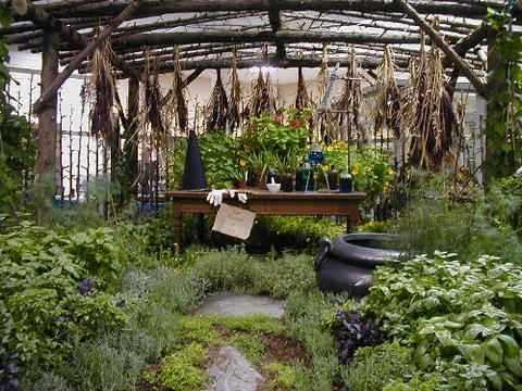 A Wytch's Garden
