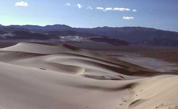 Dune Blessing