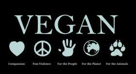 The Vegan Pagan: Interstice the First