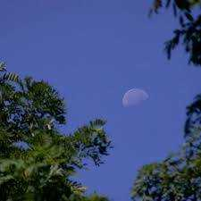 'There's Our Moon!'