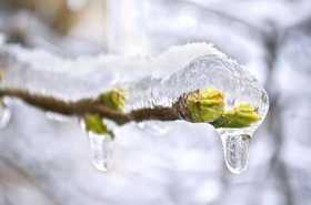 Cracking Through the Ice