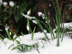 The Return of Spring and the Snows' Thaw