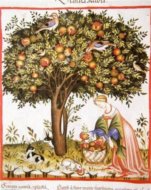 b2ap3_thumbnail_medieval-tree-of-life-woman-cat.jpg