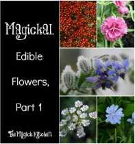 Magickal Edible Flowers, Part 1