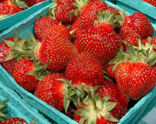 b2ap3_thumbnail_Strawberry-Basket.jpg