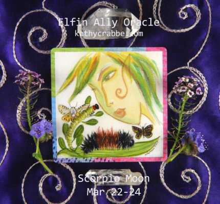 Caterpillar Oracle: Transformation (Scorpio Moon)