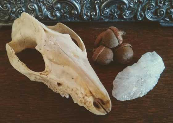 Stones, Bones, and Blood: Rituals to Prevent a House Fire