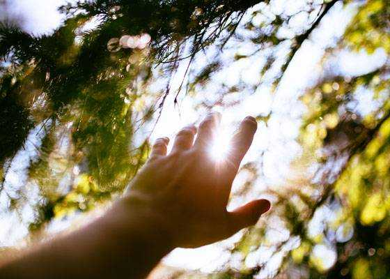 An Encounter with the Green Man: Three Lessons to Inspire Your Beltane Magic