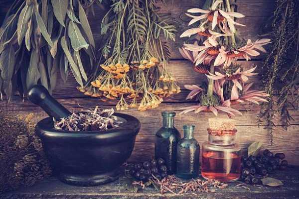 Hedge Witch Herbal Healer
