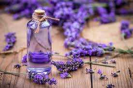 The Scent of Serenity: Mood-Boosting Essential Oils