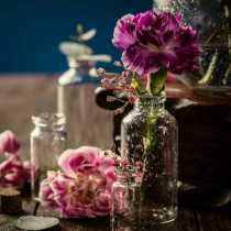 Touch of Aphrodite: Aromatherapy of the Gods