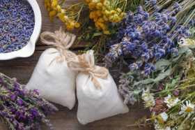 Handmade Healing Amulets: Growing Good Health