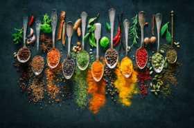 Food is Magic: Color Medicine