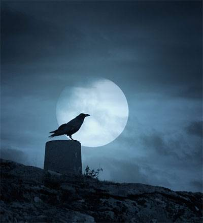 b2ap3_thumbnail_raven-on-wall-in-fulll-moon.jpg