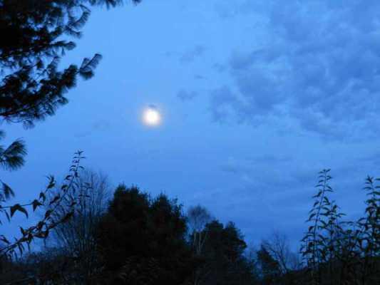 Magical Mondays: Lightness of Spirit