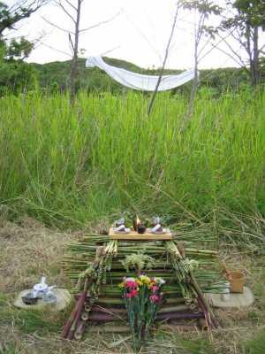 Why do ritual as a Naturalistic Pagan?