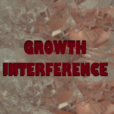 GROWTH INTERFERENCE CRYSTALS - A Lesson in Adaptation