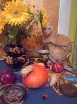 On eating a pear - a harvest prayer
