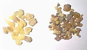 Foundations of Incense: Frankincense