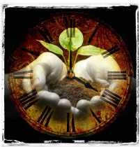 Pagan Events, Trash, and Environmentalism