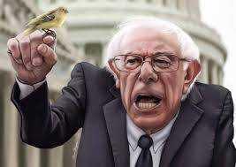 Why I Don't Like Bernie